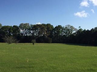LOT 6 6 MEDOW WOOD Trail, Trenton FL