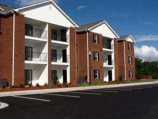 93 Broadview Dr, Blue Ridge, GA 30513