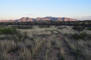 Tbd Adams Ranch 9.53 Acres Road, Dragoon AZ