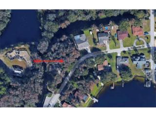 3905 Peninsular Drive, Land O' Lakes FL