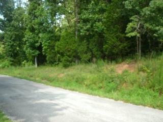 Locust Lane, Lexington TN