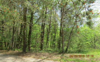 10 Ac Appalachian Highway, Morganton GA