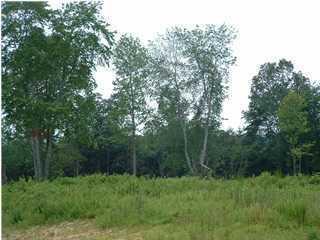 5 Hunter Trail, Trenton GA