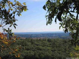 City View, Kingston NY