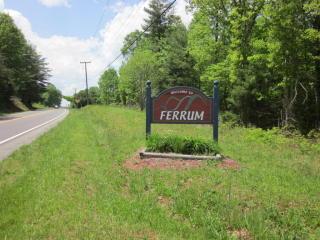 Franklin Street, Ferrum VA