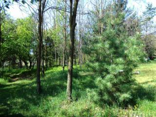 1848 18th Avenue, Arkdale WI