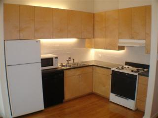 2551 N Halsted St #2S, Chicago, IL 60614