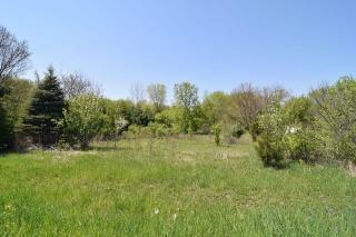 Lot 99 Brierwood Drive, Campton Hills IL