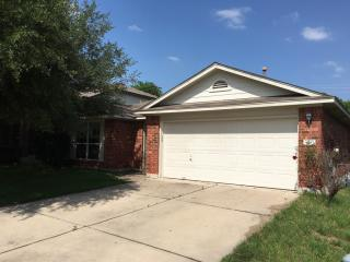 3557 Sandy Koufax Ln, Round Rock, TX 78665