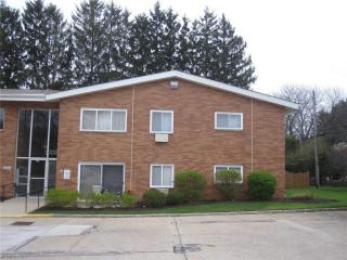 401 Tollis Parkway #243A, Broadview Heights OH