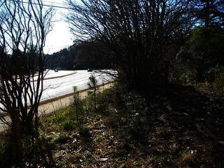 1163 West Pine Ridge Drive, Acworth GA