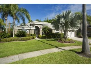 12001 Wandsworth Drive, Tampa FL