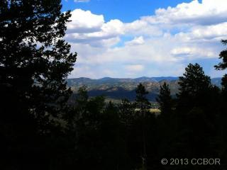 30176 Mountaintop Drive, Buena Vista CO