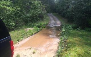 Deer Watch Lane, Blue Ridge GA