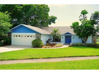 1224 Eniswood Parkway, Palm Harbor FL