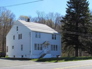 876 State Route 307, Spring Brook Township PA