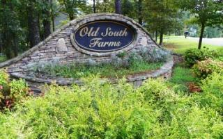 Old South Farms 51, Ellijay GA