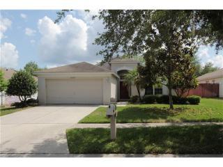 30729 Lanesborough Circle, Wesley Chapel FL