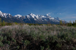 6380 North Red Tail Road, Jackson WY