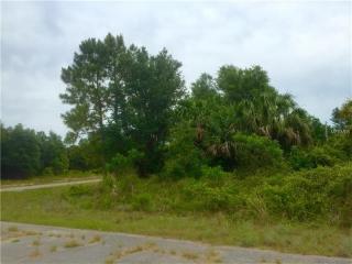 Relic Lane Vineyard Circle, North Port FL