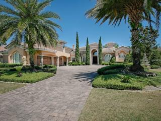 25603 High Hampton Cir, Sorrento, FL 32776
