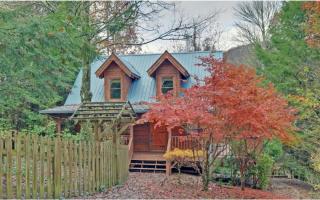 733 White Pine Trail, Suches GA