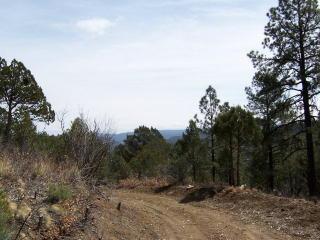 Sunny Lane, Ruidoso NM