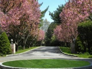 31 Meadowcroft Lane, Greenwich CT