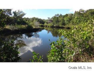 11454 West Beaverdam Null Lane, Crystal River FL