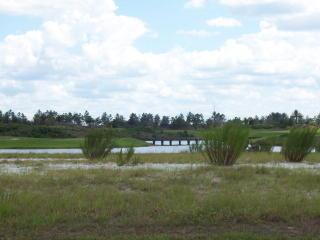 229 Conservatory Drive, Palm Coast FL
