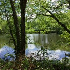 Address Not Disclosed, Deepwater, MO 64740