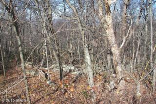 106 Cub Trail, Winchester VA