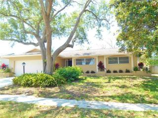 3303 San Gabriel Street, Clearwater FL