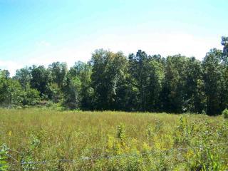 1352 Nealis Woods Road, Wildersville TN