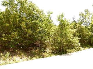 Lot 3 Blk 5 Golfcrest Circle, Kimberling City MO