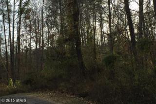 Lot 6 Lake Drive East, Amissville VA