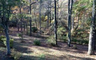 25 Lost Mine Road, Ellijay GA