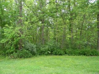 3 Acres Deer Trail, Labadie MO