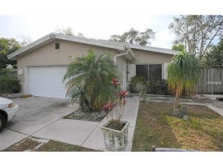 10572 Blossom Lake Drive, Seminole FL