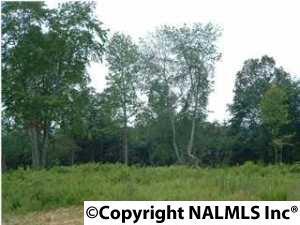 5 Hunters Trail, Trenton GA