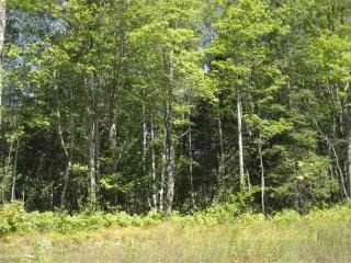 5802 Highway 51 #Lot 10, Mercer WI