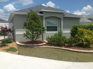 539 Jujube Ave, The Villages, FL 32163
