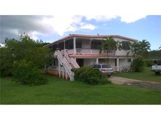 933 Bo Martineau Km 2.6, Clearwater FL