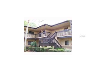 2667 Sabal Springs Circle #204, Clearwater FL