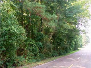 Rainey Road, Jackson MS