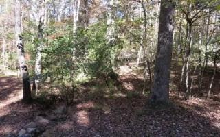 Clear Creek Road 8, Blairsville GA