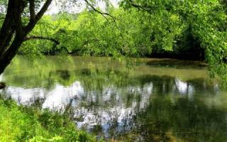 Toccoa River Lane, Mineral Bluff GA