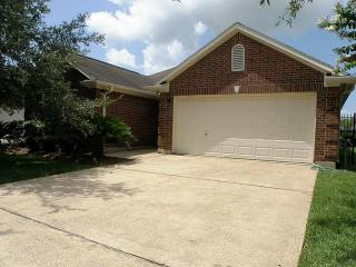 408 Live Oak Ln, Friendswood, TX 77546