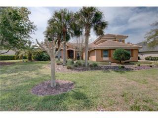5424 Millbrook Way, Palm Harbor FL