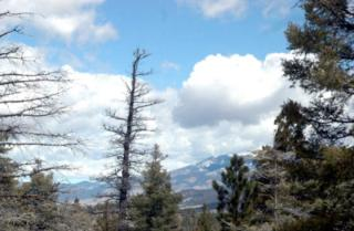 LOT 200 200 SUMMIT Place, Angel Fire NM